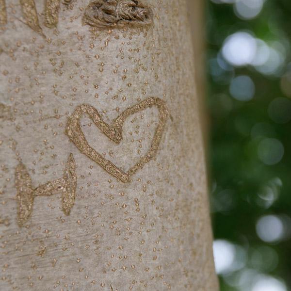 kærlighedsvejledning